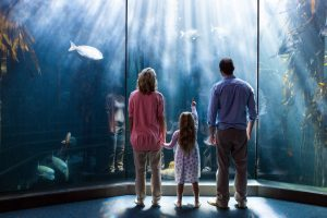 Small family at the aquarium looking at fish